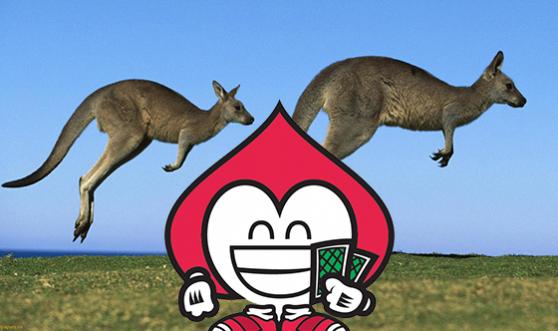 por que o canguru pula